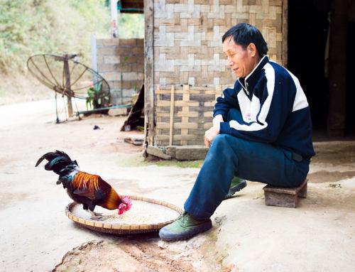Laos: Cesta daleko od civilizace II.